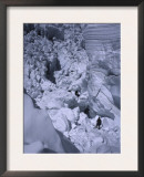 Icy Everest, Nepal Prints by Michael Brown