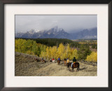 Tourists Enjoying Horseback Riding, Grand Teton National Park, Wyoming, USA Posters by Rolf Nussbaumer