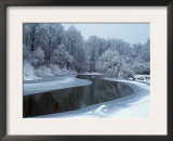 Nerussa River Beginning to Freeze, Bryansky Les Zapovednik, Russia Poster by Igor Shpilenok