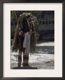 Dragon Costume, Indonesia Prints by Michael Brown