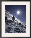 Man with Dog Climbing Arapahoe Peak in Strong Wind and Snow, Colorado Prints by Michael Brown