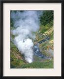 The Bolshoi / Greater Geyser Erupting, Geyser Valley, Kronotsky Zapovednik, Russia Print by Igor Shpilenok