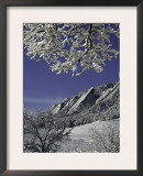 Winterscene of the Flatirons in Boulder, Colorado Art by Dörte Pietron