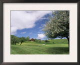 Traditional Farmhouse and Apple Tree in Blossom, Unteraegeri, Switzerland Print by Rolf Nussbaumer