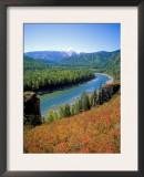Autumn Colours and Katun River, Katunsky Zapovednik, Altai Mountains, Russia Posters by Igor Shpilenok