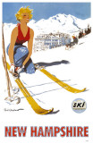 New Hampshire Ski Poster Photo