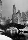 Central Park Masterprint