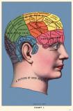Phrenology Masterprint
