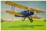 Travel Air Bi-Plane Masterprint