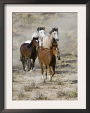 Group of Wild Horses, Cantering Across Sagebrush-Steppe, Adobe Town, Wyoming, USA Art by Carol Walker