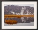 Geysers and Fumeroles of the Uzon Volcano, Kronotsky Zapovednik Reserve, Kamchatka, Russia Prints by Igor Shpilenok