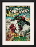 Marvel Comics Retro: The Amazing Spider-Man Comic Book Cover 122, the Green Goblin (aged) Art