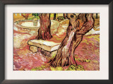 The Stone Bench In The Garden of Saint-Paul Hospital Prints by Vincent van Gogh