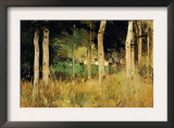 The Cottage Amongs The Birch Trees Prints by Berthe Morisot
