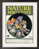 Nature Magazine - View of Flowers, c.1927 Print