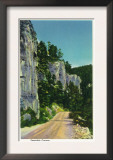 Black Hills, South Dakota - View of Spearfish Canyon, c.1937 Posters
