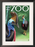 Cassowary - Visit the Zoo, c.2009 Print by  Lantern Press