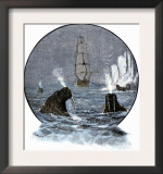 Walrus in Arctic Waters Near a Tall Sailing Ship Poster