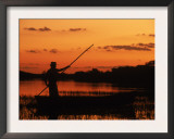 Gaucho Poling Canoe at Sunset, Ibera Marshes National Reserve, Argentina, South America Posters by Ross Couper-johnston