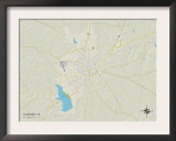Political Map of Cleburne, TX Poster