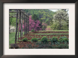 Vegetable Garden at Monticello, Thomas Jefferson's Home in Charlottesville, Virginia Prints