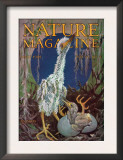 Nature Magazine - View of a Stork with a Baby Stork Hatching, c.1928 Poster
