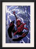 Spider-Man Unlimited 1 Cover: Spider-Man Prints by Andy Kubert