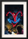 The Amazing Spider-Man 518 Cover: Spider-Man Prints by Mike Deodato Jr.