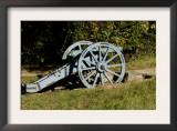 Revolutionary War French Cannon Called the Fox, Yorktown Battlefield, Virginia Art