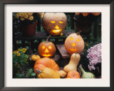 Different Kinds of Pumpkin and Pumpkin Faces at Halloween (Cucurbita Sp.) Posters by  Reinhard