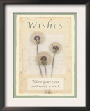 Wishes Posters