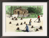Pioneers Planting Corn on Newly Cleared Land in the Backwoods Prints
