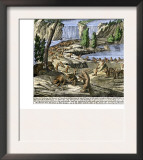 Beavers at Work Below Niagara Falls, 18th Century Prints