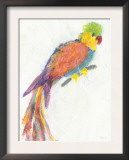 Parrot Extraordinaire Posters by Flavia Weedn