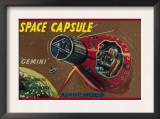 Space Capsule Gemini Poster