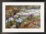 Water Garden Posters by Childe Hassam