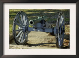 Revolutionary War French Cannon Called the Fox, Yorktown Battlefield, Virginia Art