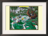 A Paddling of Peking Ducks Prints by Richard Kelly