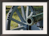 Revolutionary War French Cannon Called the Fox, Yorktown Battlefield, Virginia Prints