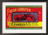 Fresh Lobster Posters