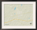 Political Map of Pelahatchie, MS Prints