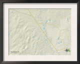 Political Map of Nellieburg, MS Prints
