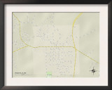 Political Map of Woodville, MS Prints