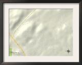 Political Map of Smoke Rise, AL Prints