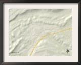 Political Map of Springville, AL Art