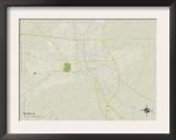 Political Map of Selma, AL Prints