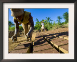 Woman Making Bricks with Mud for Traditional Building Construction, Sambava, North Madagascar Poster by Inaki Relanzon