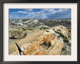 Petrified Logs Exposed by Erosion, Painted Desert and Petrified Forest, Arizona, Usa May 2007 Art by Philippe Clement