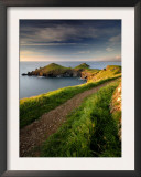 Footpath Along the Rumps, Pentire Point, Near Polzeath, Cornwall, UK Prints by Ross Hoddinott
