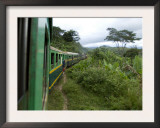 Train Travelling Betwen Manakara and Fianarantsoa, Madagascar Print by Inaki Relanzon